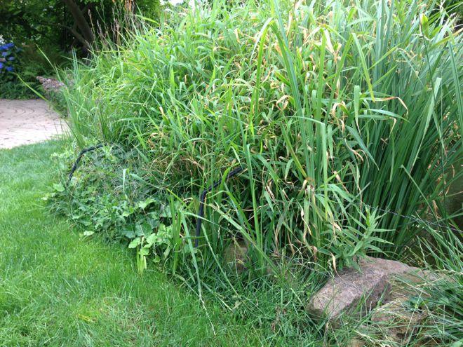 Teich eisfrei ohne strom garten design ideen um ihr for Garten pool ohne strom
